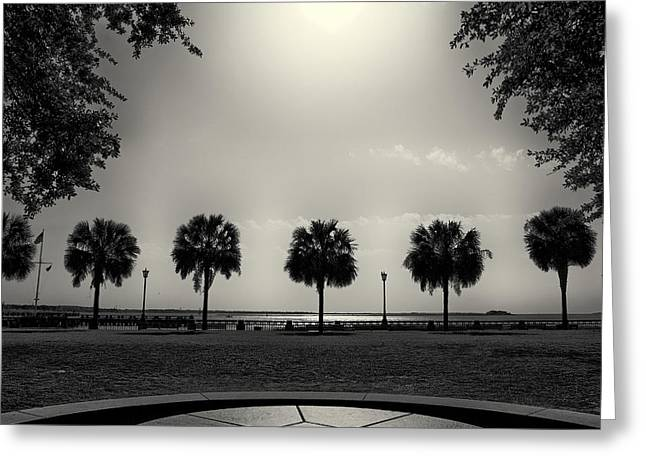Charleston Greeting Cards - Waterfront Park Greeting Card by Patrick M Lynch