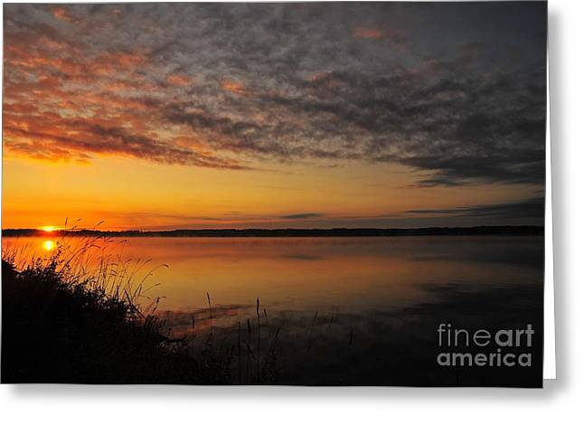 Waterfront Dawn Greeting Card by Terri Gostola
