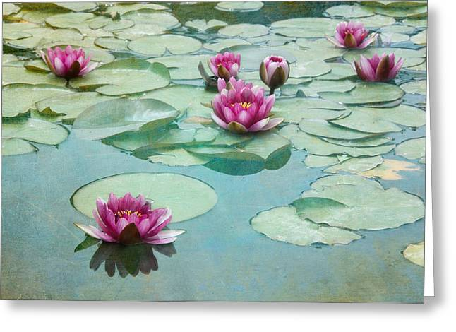 """flora Prints"" Greeting Cards - Waterliles Greeting Card by Carolyn Dalessandro"
