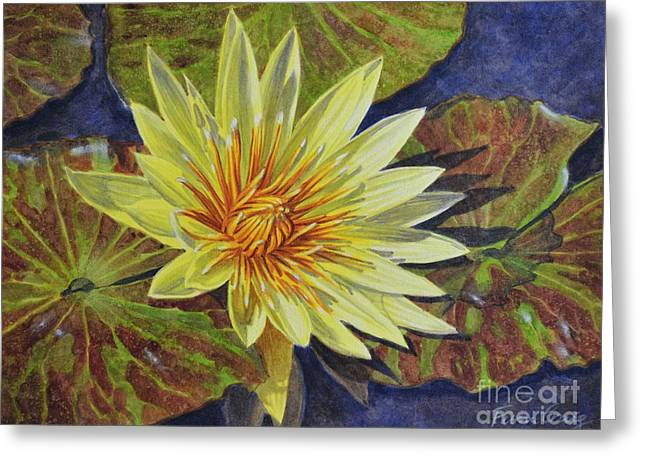 Aquatic Greeting Cards - Water Lilies 2 Greeting Card by Fiona Craig