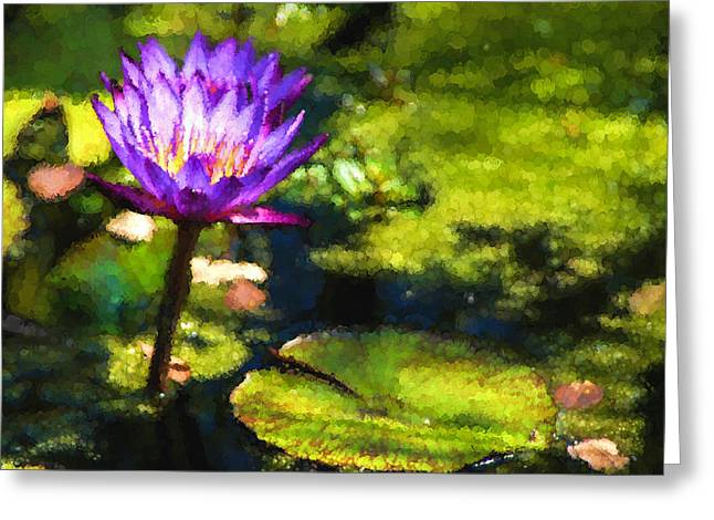 Lilly Pads Greeting Cards - Waterlilies Impressions - Sunny Purple Pair Greeting Card by Georgia Mizuleva