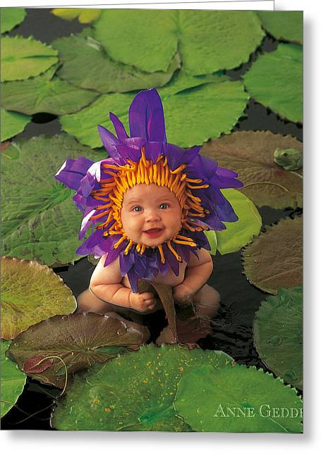 Color Photography Greeting Cards - Waterlily Greeting Card by Anne Geddes