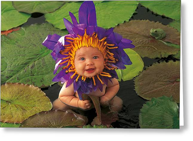 Waterlily Greeting Card by Anne Geddes
