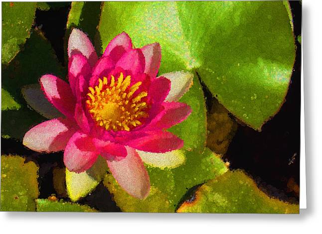 Lilly Pads Greeting Cards - Waterlily Impression in Fuchsia and Pink Greeting Card by Georgia Mizuleva