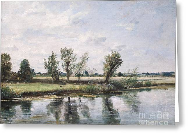 Constable Greeting Cards - Watermeadows near Salisbury by John Constable Greeting Card by Roberto Morgenthaler