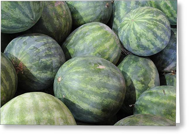 Watermelon Greeting Cards - Watermelons Greeting Card by Bradford Martin