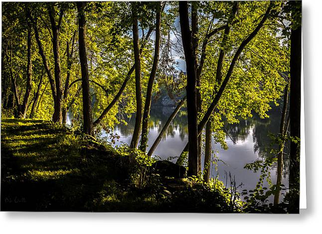 Waters Edge Greeting Card by Bob Orsillo