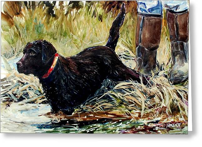 Chocolate Lab Greeting Cards - Waters Edge Greeting Card by Molly Poole