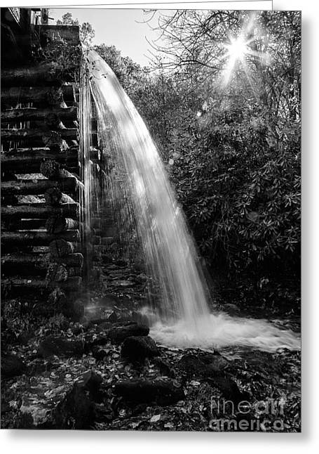 Water Flowing Greeting Cards - Waters Flowing from the Mill Greeting Card by Terri Morris