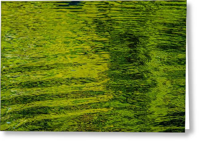 Trees Reflecting In Creek Greeting Cards - Waters Green Greeting Card by Roxy Hurtubise
