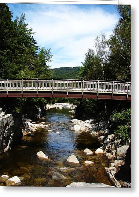 Fishing Creek Greeting Cards - Waters Journey Greeting Card by Ella Char