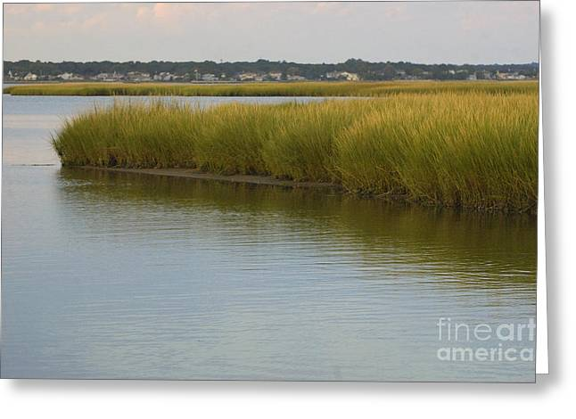 Clean Water Digital Art Greeting Cards - Waterway Serenity Greeting Card by Adspice Studios