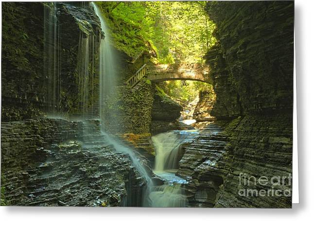 Watkins Glen New York Greeting Cards - Watkins Glen Falls In The Canyon Greeting Card by Adam Jewell