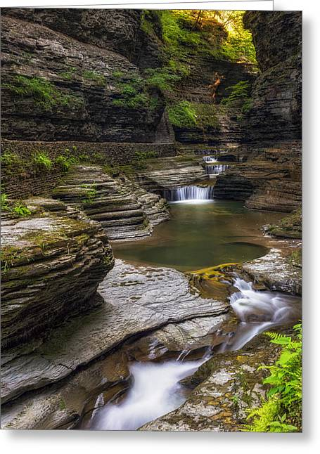 Finger Lakes Greeting Cards - Watkins Glen Greeting Card by Mark Papke