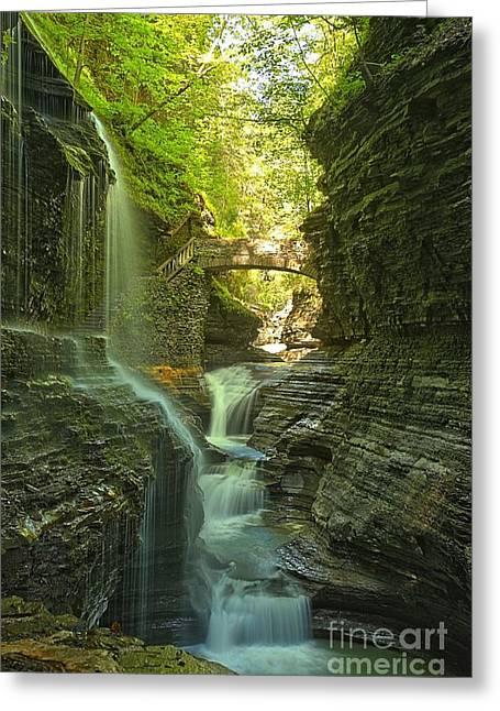 Finger Lakes Greeting Cards - Watkins Glen Rainbow Falls Portrait Greeting Card by Adam Jewell