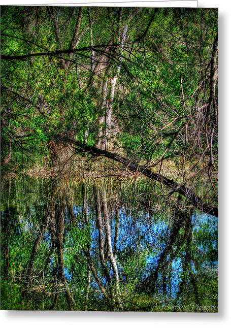 Watson Lake Greeting Cards - Watson Woods Reflection HDR Greeting Card by Aaron Burrows