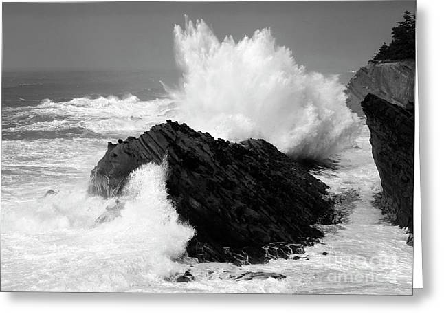 Historical Buildings Greeting Cards - Wave at Shore Acres BW Greeting Card by Bob Christopher