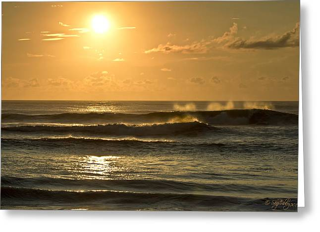 Skip Tribby Greeting Cards - Waves of Life Greeting Card by Skip Tribby