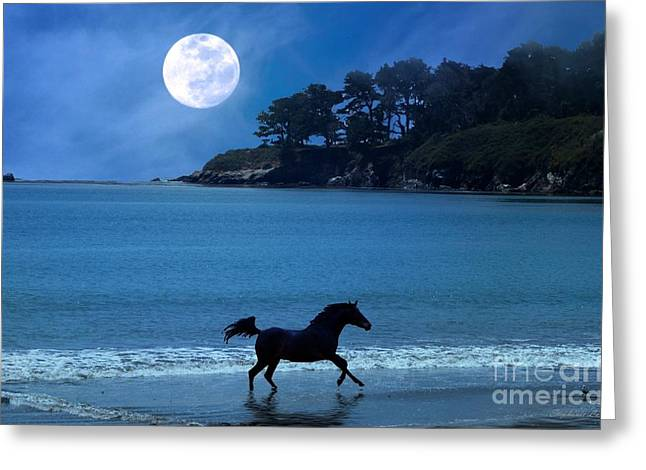 Sea Moon Full Moon Greeting Cards - Wave Runner Greeting Card by Stephanie Laird