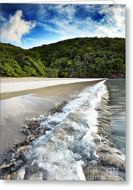 Virgin Pyrography Greeting Cards - Waves at Magens Bay Beach Greeting Card by Eyzen M Kim