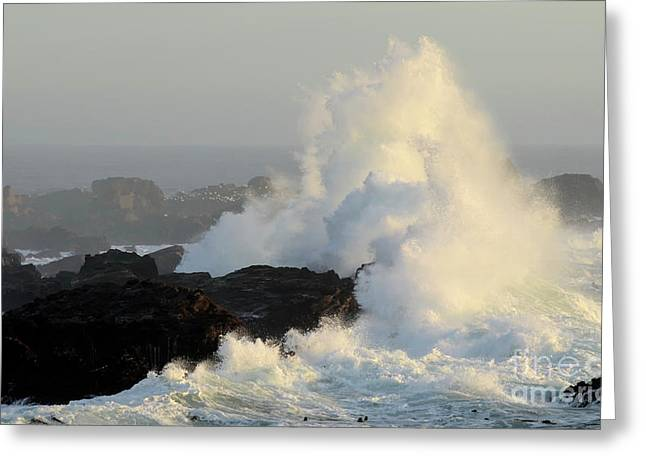 California Photography Greeting Cards - Waves At Salt Point Greeting Card by Bob Christopher