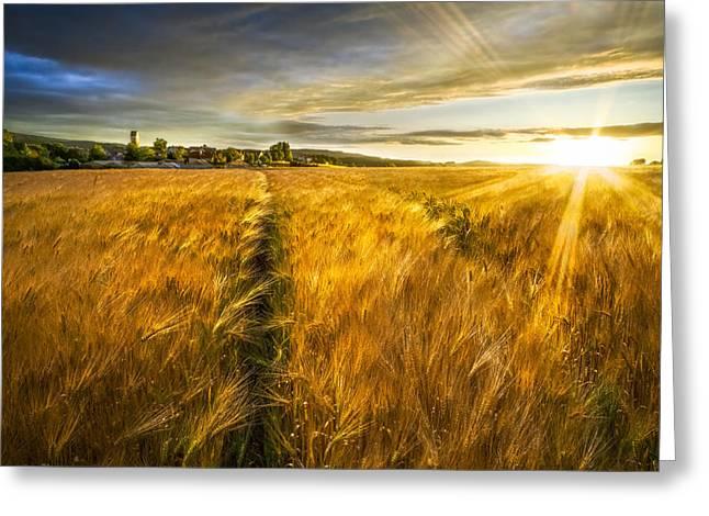 Waves Of Grain Greeting Card by Debra and Dave Vanderlaan
