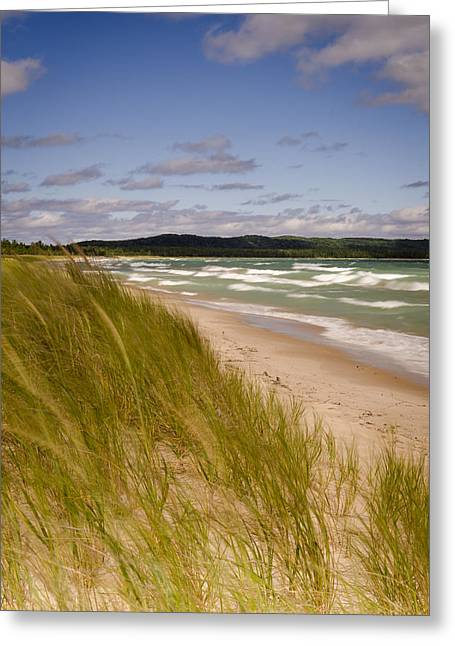 Thomas Pettengill Greeting Cards - Waves of Water and Grass Greeting Card by Thomas Pettengill