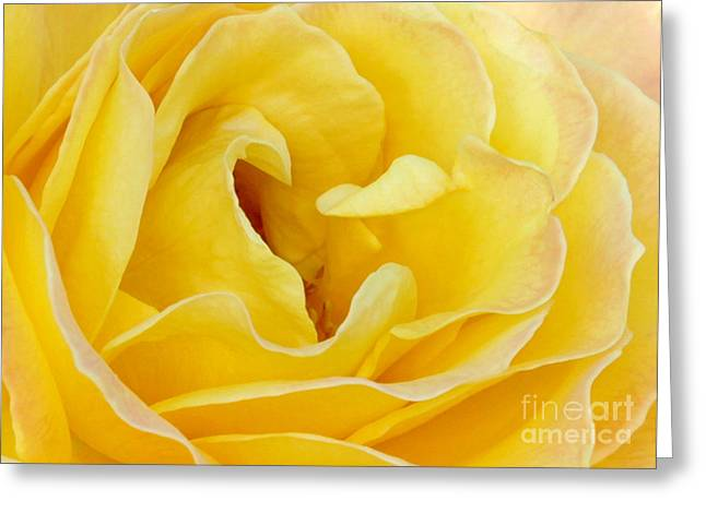 Rosette Greeting Cards - Waves of Yellow Greeting Card by Sabrina L Ryan