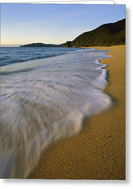 Beach Photos Greeting Cards - Waves On Totaranui Beach Abel Tasman Np Greeting Card by Harley Betts