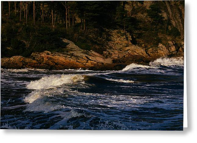 Mandal Greeting Cards - Waves Roll Greeting Card by Ben Foster