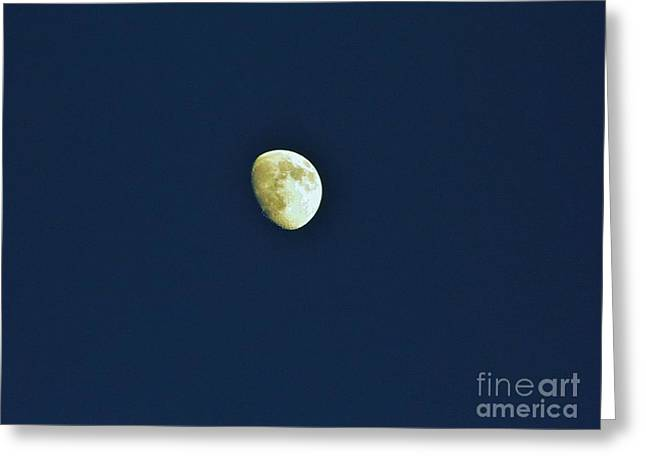 Waxing Moon Beauty Greeting Card by D Hackett