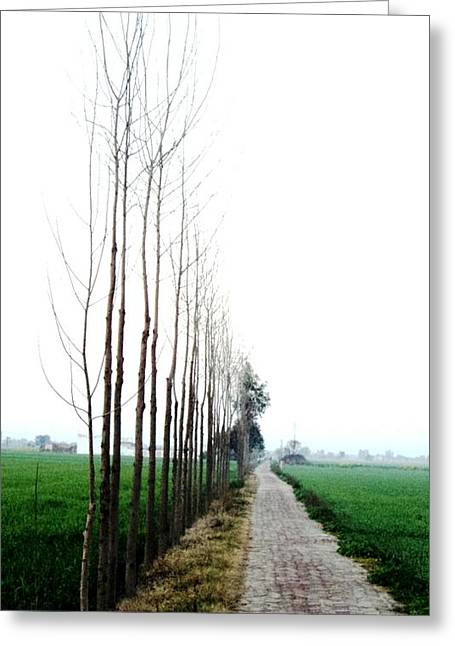 Way To Heaven Greeting Card by Jyoti Vats