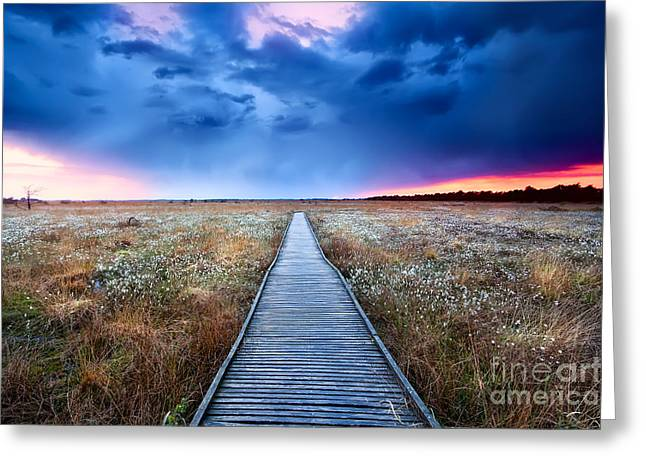 Marsh Path Greeting Cards - Way to the heaven Greeting Card by Olha Rohulya