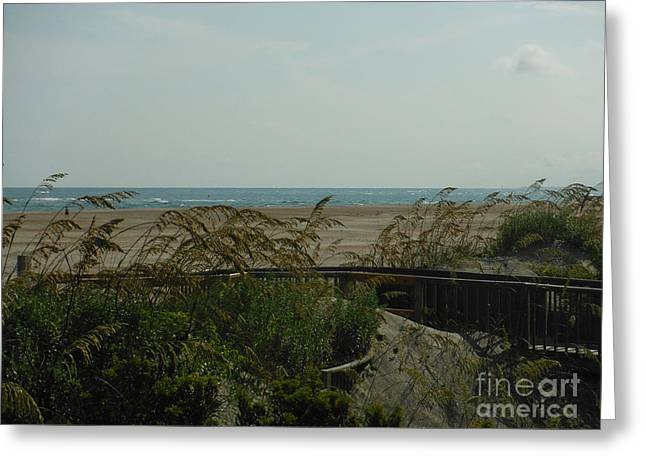 Walkway To The Beach Greeting Cards - Ways To The Beach Series 1 Greeting Card by Paddy Shaffer