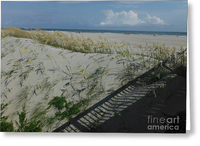 Walkway To The Beach Greeting Cards - Ways To The Beach Series 2 Greeting Card by Paddy Shaffer