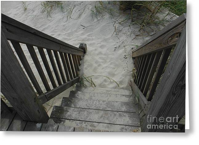 Walkway To The Beach Greeting Cards - Ways To The Beach Series 3 Greeting Card by Paddy Shaffer