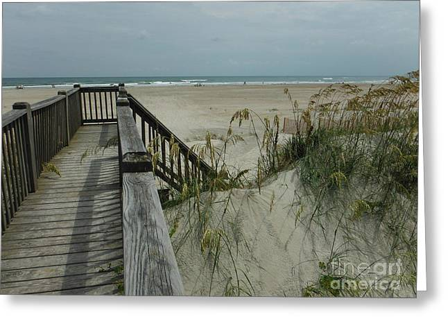 Recently Sold -  - Wooden Stairs Greeting Cards - Ways To The Beach Series 5 Greeting Card by Paddy Shaffer