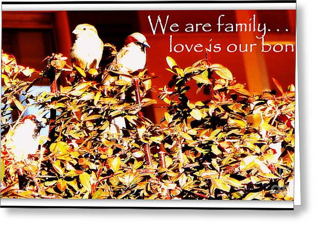 """""""we Are Family"""" Greeting Cards - We Are Family Greeting Card by Bobbee Rickard"""