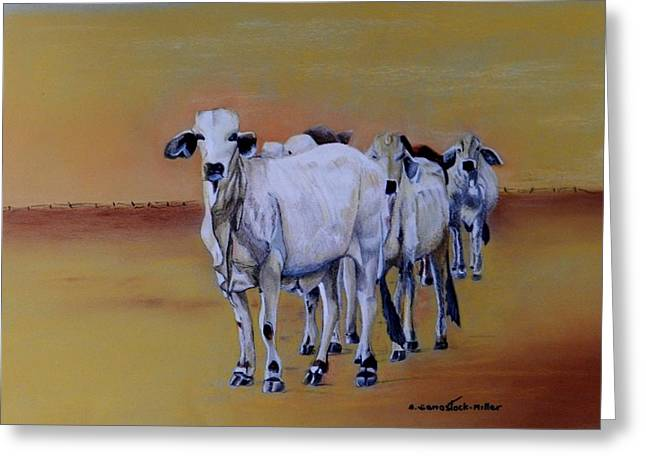 Cattle Pastels Greeting Cards - We are Waiting Greeting Card by Sandra Sengstock-Miller