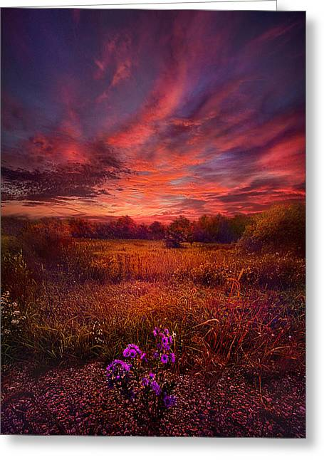 Back-light Greeting Cards - We Find Our Own Story Greeting Card by Phil Koch