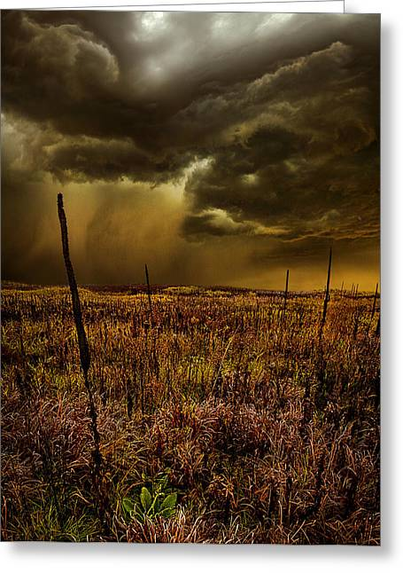 Geographic Greeting Cards - We Stand Alone Greeting Card by Phil Koch