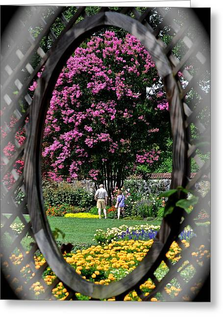 Marvelous View Greeting Cards - We Were Framed Greeting Card by Frozen in Time Fine Art Photography