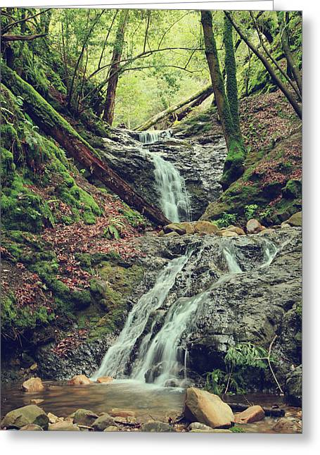 Falling Water Creek Greeting Cards - We Were Lost in Love Greeting Card by Laurie Search
