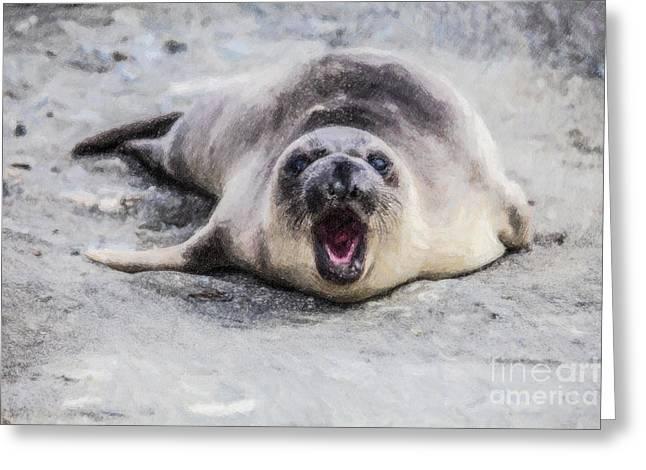 Elephant Seals Digital Greeting Cards - Weaner calling Greeting Card by Liz Leyden