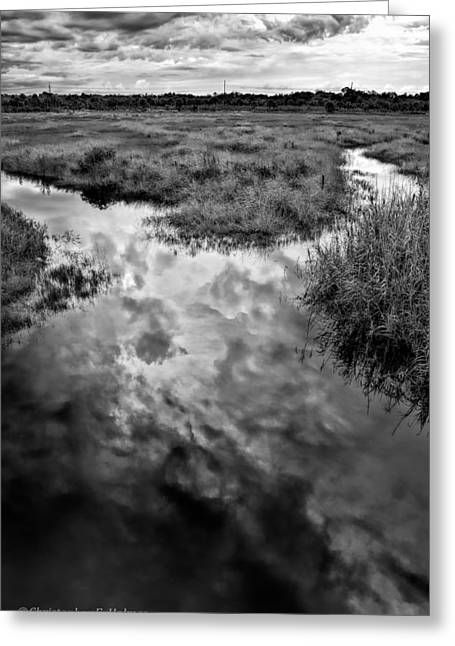 Florida Marsh Greeting Cards - Weather Reflected - BW Greeting Card by Christopher Holmes
