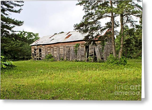 Tin Roof Greeting Cards - Weathered and Aged Greeting Card by Debra Johnson