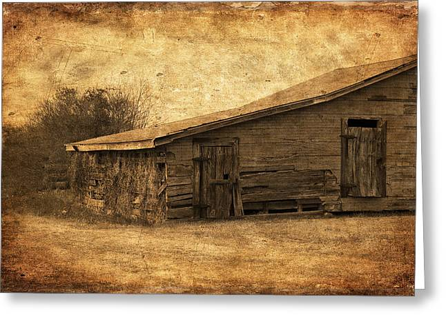 Sheds Greeting Cards - Weathered and Old Greeting Card by Kim Hojnacki