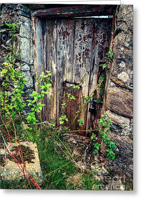 Old Doors Greeting Cards - Weathered Door Greeting Card by Adrian Evans