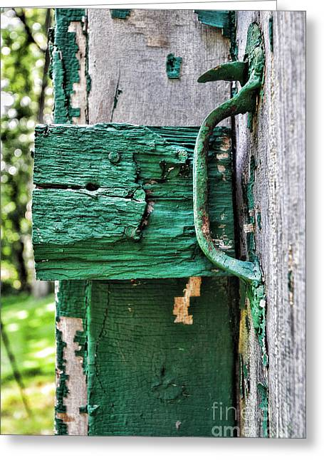 Painted Wood Greeting Cards - Weathered Green Paint Greeting Card by Paul Ward