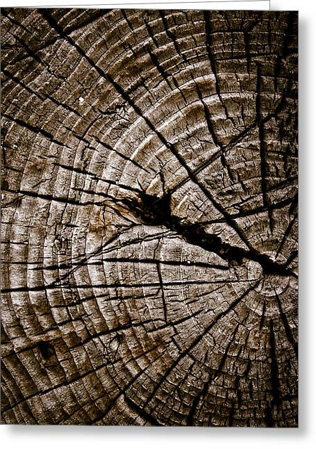 Weathered Wood Greeting Cards - Weathered Wood Greeting Card by Frank Tschakert